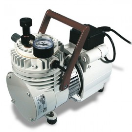 Vacuumpomp PM 19629-035 (P2-N)