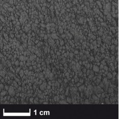 Carbonvezel gemalen 0.2 mm