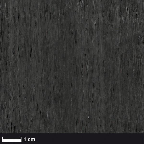 Carbon Legsel NCF UD 50 g/m² breedte 50 cm